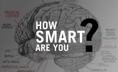 20100328_how-smart-are-you_poster_img